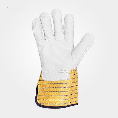 دستکش آرگون مهندسی کندور