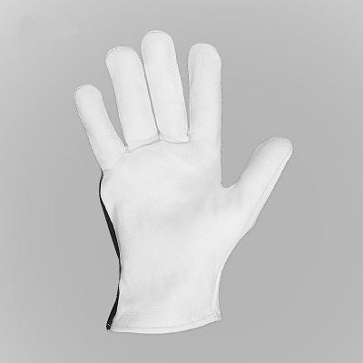 دستکش آرگون کوتاه SPC
